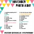 november-photo-a-day-#fmsphotoaday