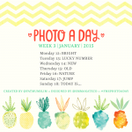 Photo A Day | Week Three | January 2015