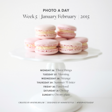 Photo A Day | Week Five | January/February