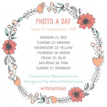 Photo A Day Challenge 2015 // Week 39