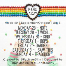 Photo A Day Challenge 2015 // Week 40