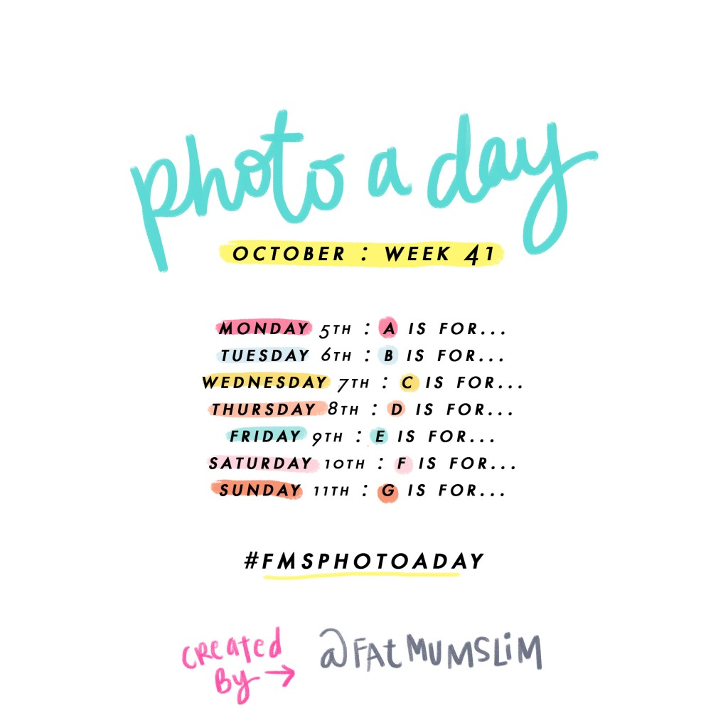 Photo A Day Challenge 2015 // Week 41