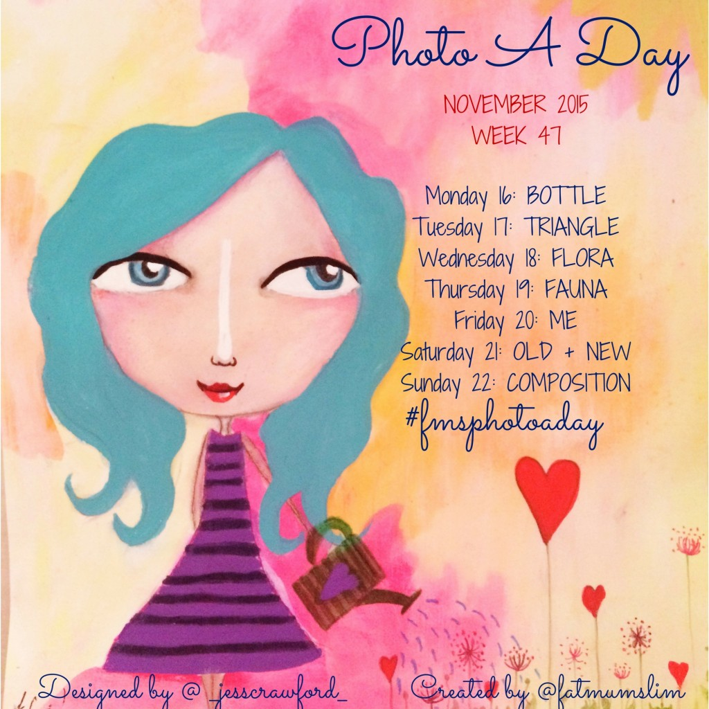 Photo A Day Challenge 2015 // Week 47