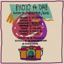 Photo A Day Challenge 2015 // Week 46