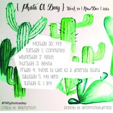 Photo A Day Challenge 2015 // Week 49
