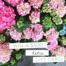Win a $300 Katies Gift Card