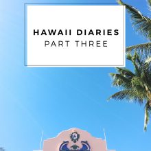 HAWAII DIARIES / PART THREE