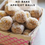 Thermomix No Bake Apricot Balls Recipe